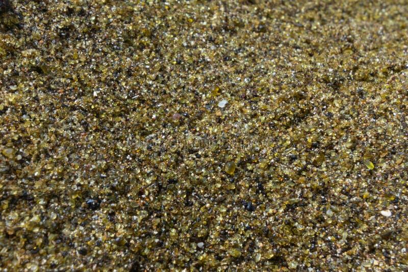 美国夏威夷大岛帕帕科莱亚橄榄绿沙滩特写 免版税库存图片