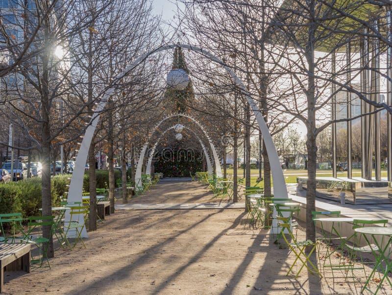 美国德克萨斯州达拉斯市一个公园里树木的美丽景色 免版税库存图片