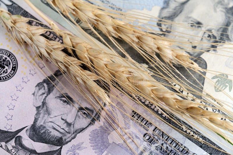 美国总统画象的特写镜头美元和麦子耳朵的 买卖五谷的概念, harv的价格 库存照片