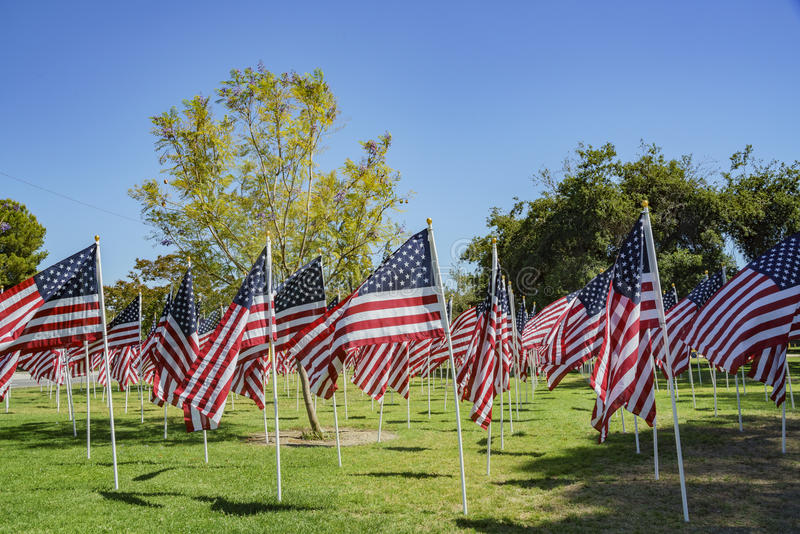 美国旗子海  库存照片
