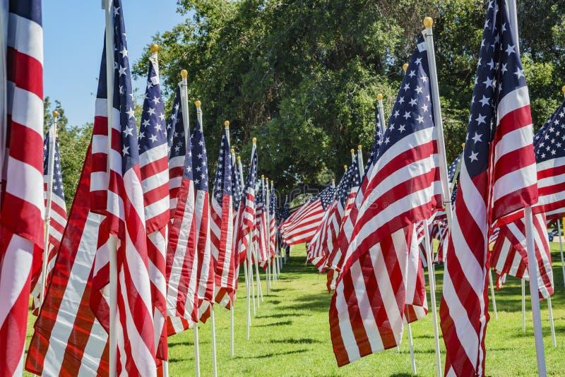 美国旗子海  库存图片