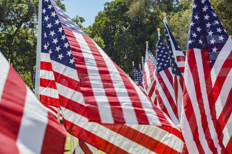 美国旗子海  图库摄影