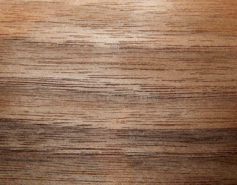 美国核桃树的木表面的纹理 furnitur的木表面饰板 库存图片
