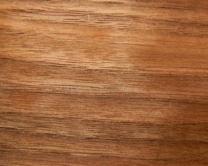 美国核桃树的木表面的纹理 furnitur的木表面饰板 免版税库存图片