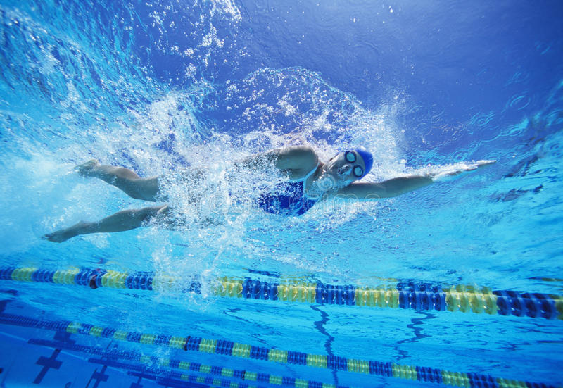美国泳装的女性游泳者,当游泳在水池时 免版税图库摄影