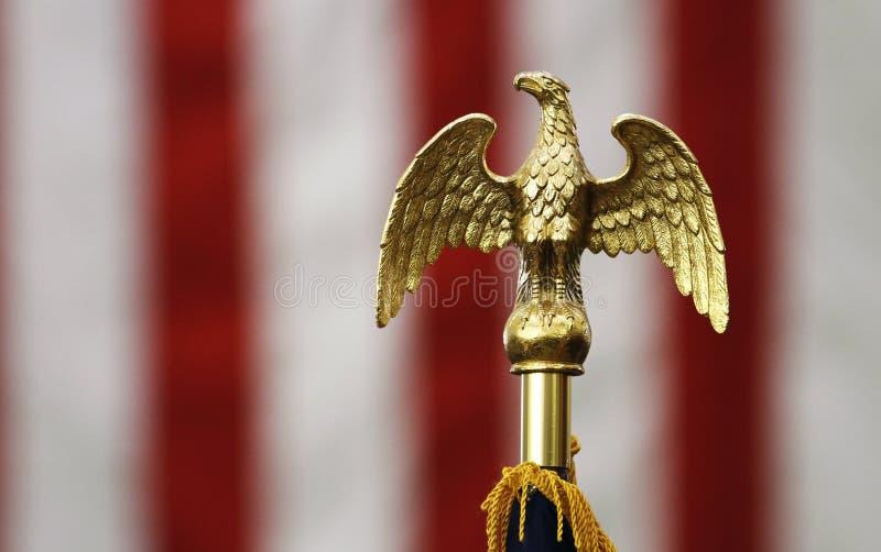 美国老鹰标志顶层 免版税库存照片
