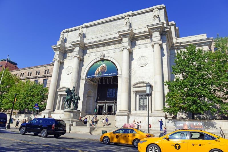 美国自然历史博物馆在曼哈顿 库存图片