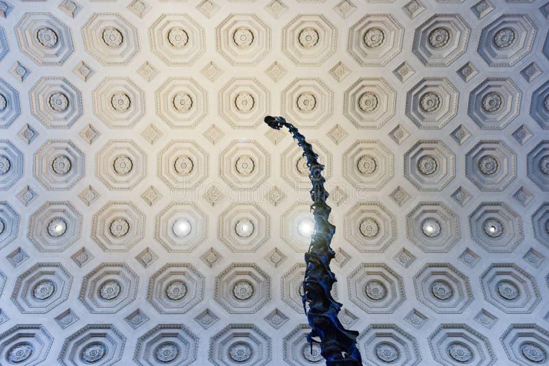 美国自然历史博物馆-纽约 库存照片