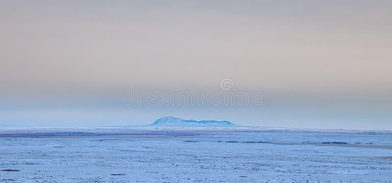 美国蒙大拿州北部草岭远景 免版税图库摄影
