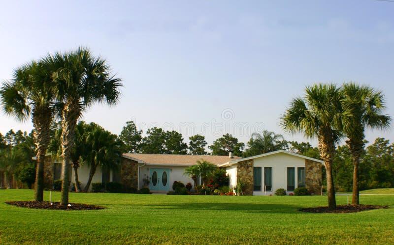 美国蓝色门梦想家庭棕榈树 库存图片
