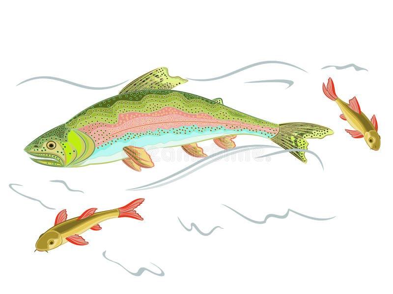 美国虹鳟食肉动物的抓住在Th的一条鱼 向量例证