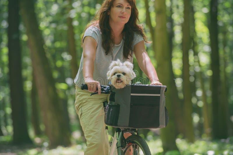 美女和她的狗一起骑车 免版税库存图片