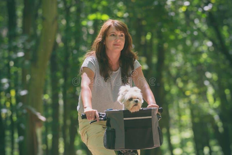 美女和她的狗一起骑车 免版税库存照片