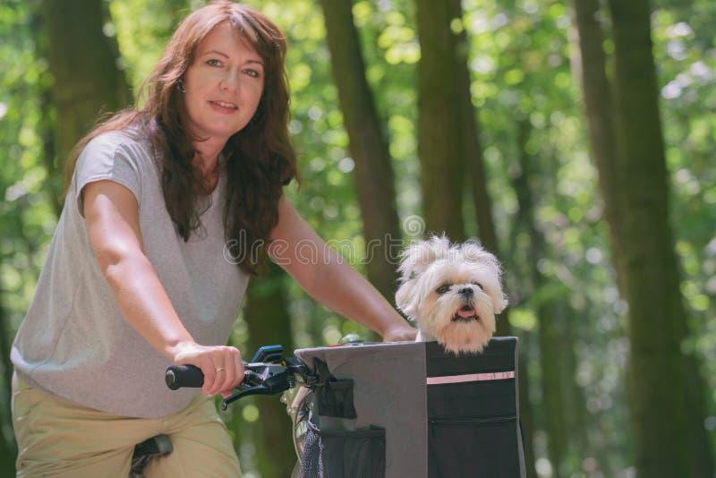 美女和她的狗一起骑车 库存图片