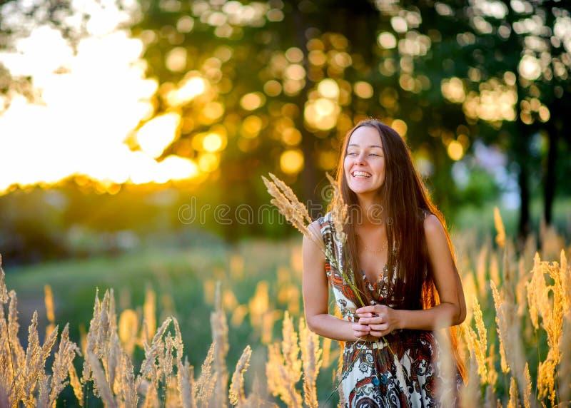 美女在日落的公园,从美丽的壮观的刀片收集花束 免版税库存图片