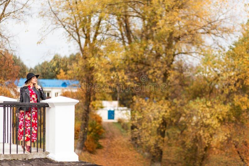 美女在桥梁站立并且敬佩秋天公园的看法 免版税库存图片