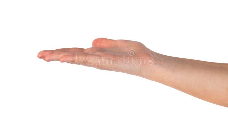 美女的手,棕榈 r 库存照片
