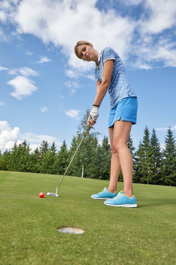美女,当打高尔夫球时准备好击中在孔前面的球在绿色领域背景 免版税库存照片