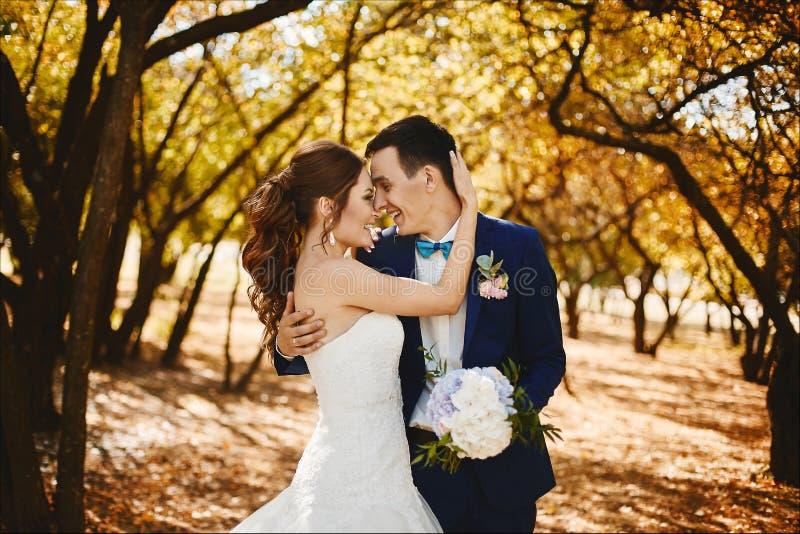 美好和愉快的夫妇已婚摆在公园在夏天好日子,时髦的一英俊的年轻人 免版税库存图片