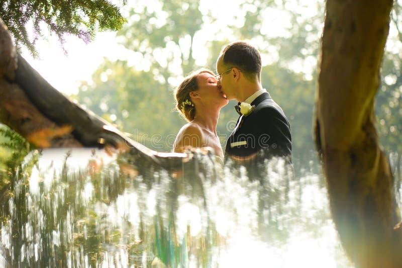 美好新娘夫妇拥抱 图库摄影