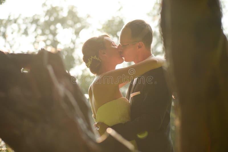 美好新娘夫妇拥抱 免版税库存图片