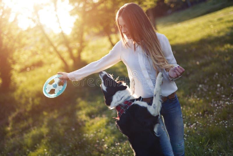 美好深色使用与狗本质上在日落期间的 库存图片