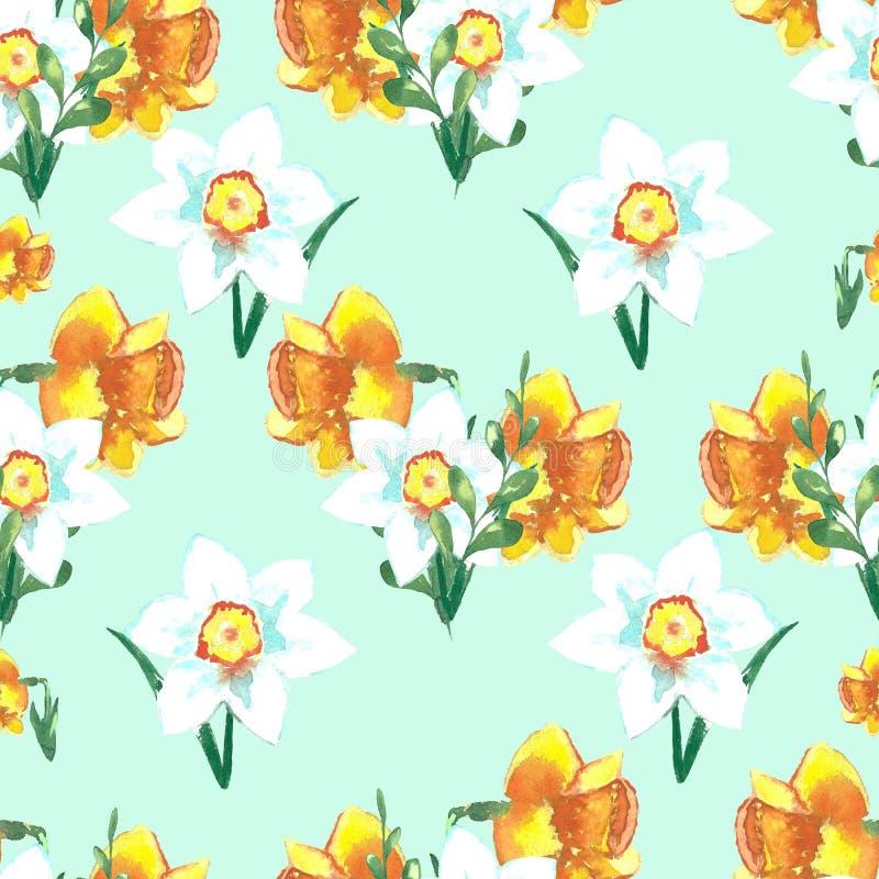 美好的与明亮的五颜六色的黄水仙的春天花卉背景 r 向量例证