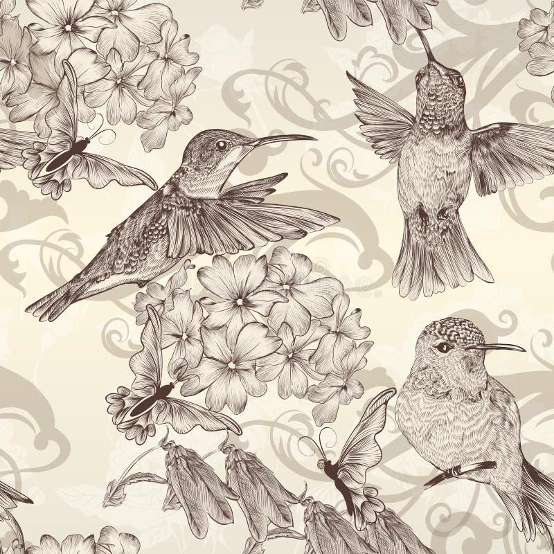 美好的与humingbirds的传染媒介无缝的墙纸在葡萄酒 皇族释放例证