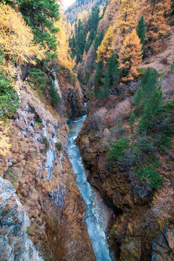 美好的与Zmuttbach小河的秋天高山风景在策马特附近 图库摄影