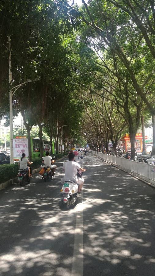 美好的中国南宁街道风景 免版税库存图片