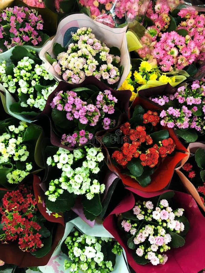美好的五颜六色的明亮的花束视图 库存图片