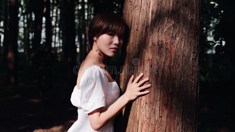 美好的亚洲妇女拥抱画象一棵大树和看在glamo阴影夏天森林室外时尚画象的照相机  免版税库存图片