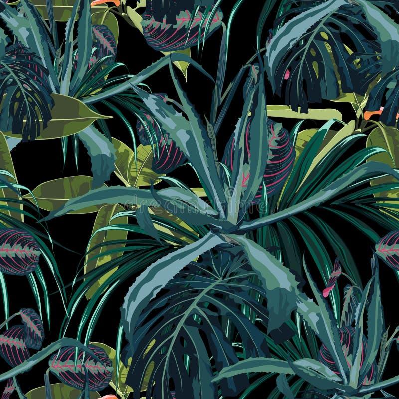 美好的传染媒介花卉无缝的样式背景用龙舌兰和异乎寻常的热带植物 库存例证