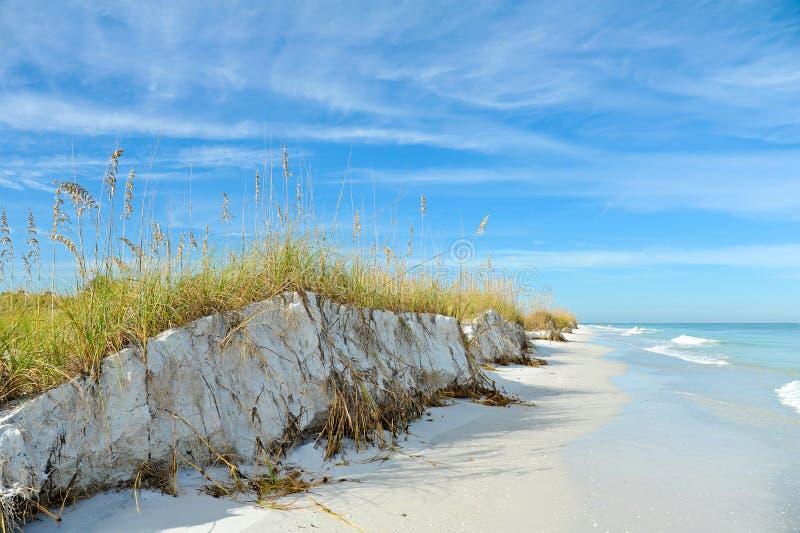 美好的佛罗里达海岸线 库存照片