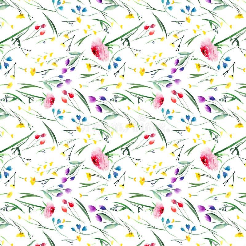 美好的典雅的明亮的花卉玫瑰色春天五颜六色的翠雀的羽扇豆和与芽、绿色叶子和草的矢车菊样式 库存例证