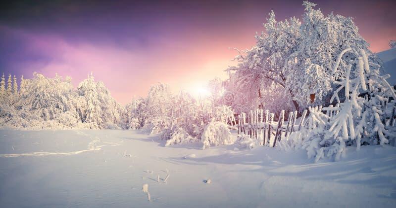 美好的冬天日出在山村 免版税库存照片