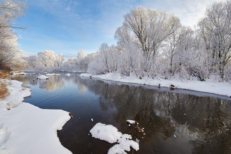 美好的冬天软的霜风景 库存照片