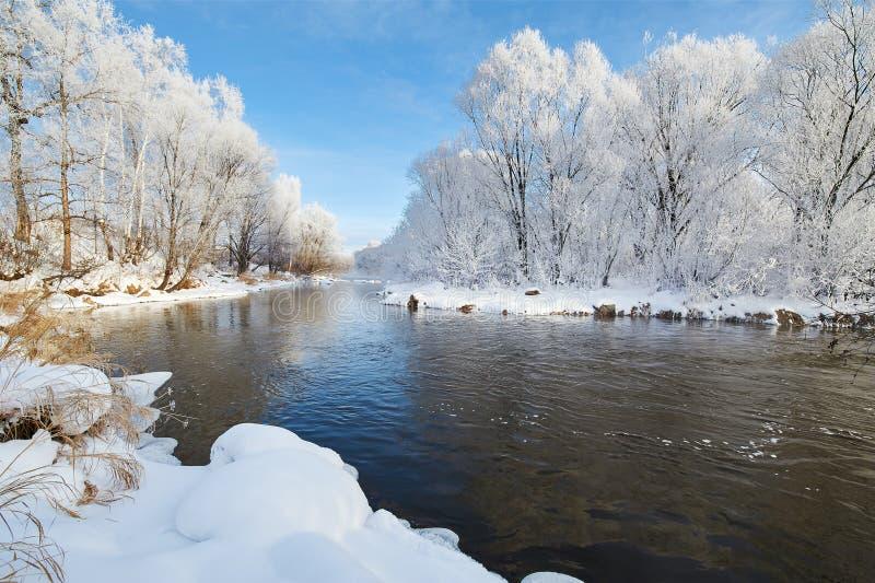 美好的冬天软的霜 库存照片