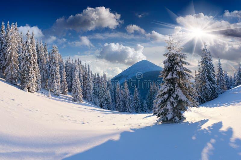 美好的冬天风景。 库存照片
