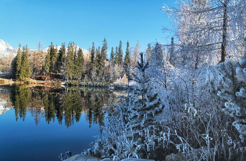 美好的冬天风景高Tatras, Strbske 免版税库存照片