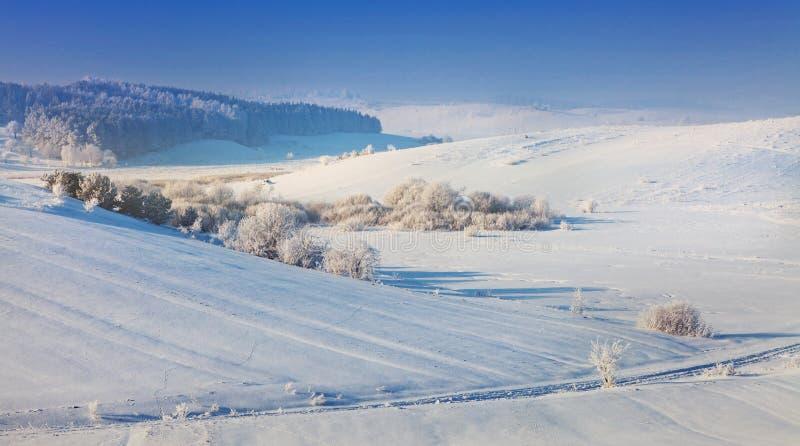 美好的冬天landscape.3d图象 免版税库存图片