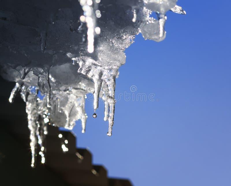 美好的发光的冰柱在屋顶熔化并且滴下在春天 免版税图库摄影
