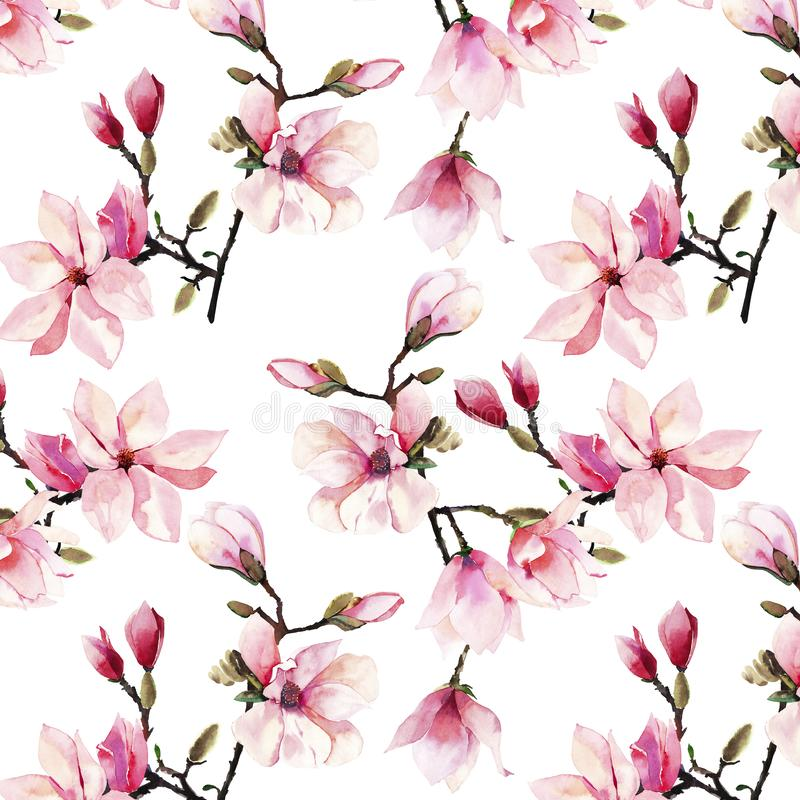 美好的可爱的一个桃红色日本木兰花水彩手例证的招标草本美妙的花卉夏天样式 免版税库存照片