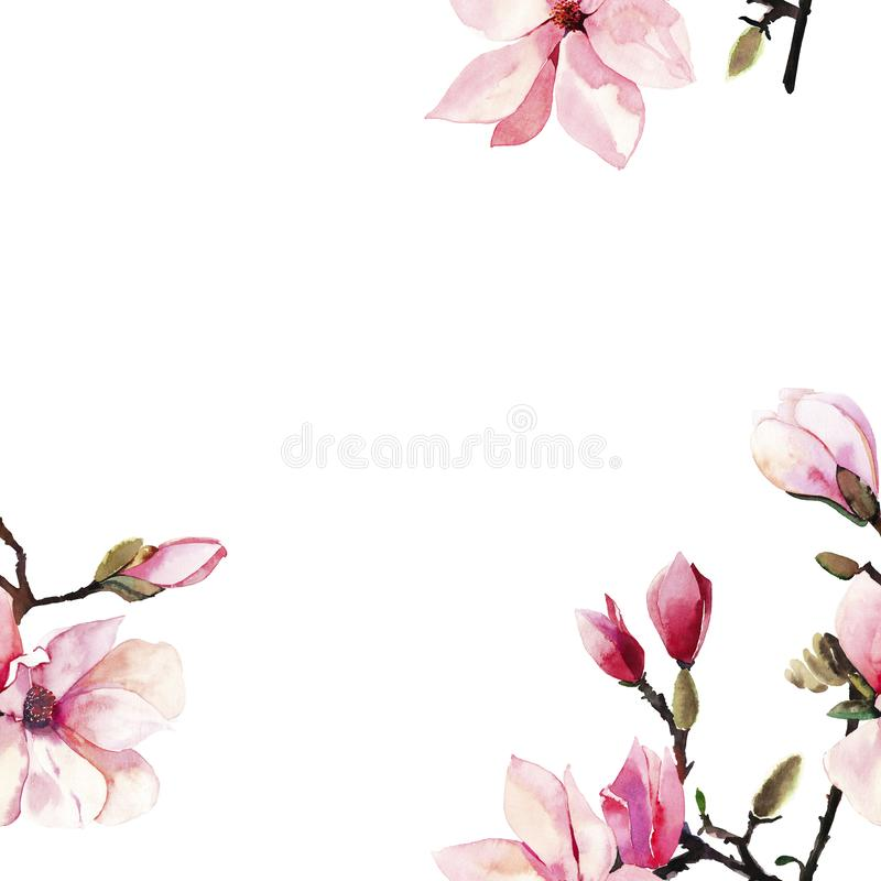 美好的可爱的一个桃红色日本木兰花水彩手例证的招标草本美妙的花卉夏天框架 皇族释放例证