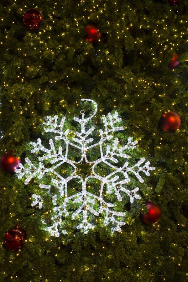 美好的圣诞灯 库存照片