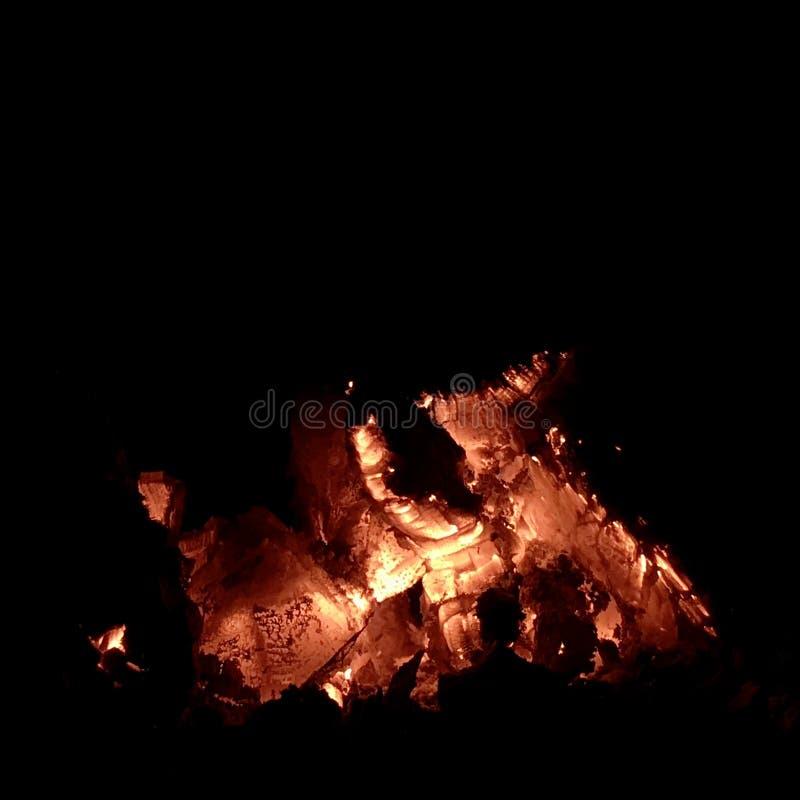 美好的在明亮的黄色火的火焰褐色木深黑色煤炭在金属火盆里面 库存图片