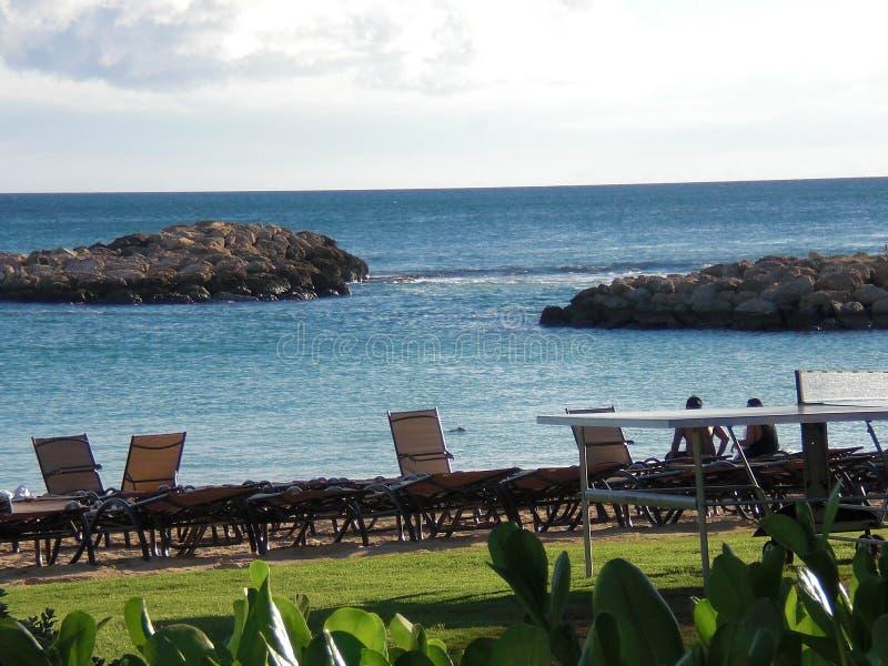美好的夏威夷热带天堂 库存照片