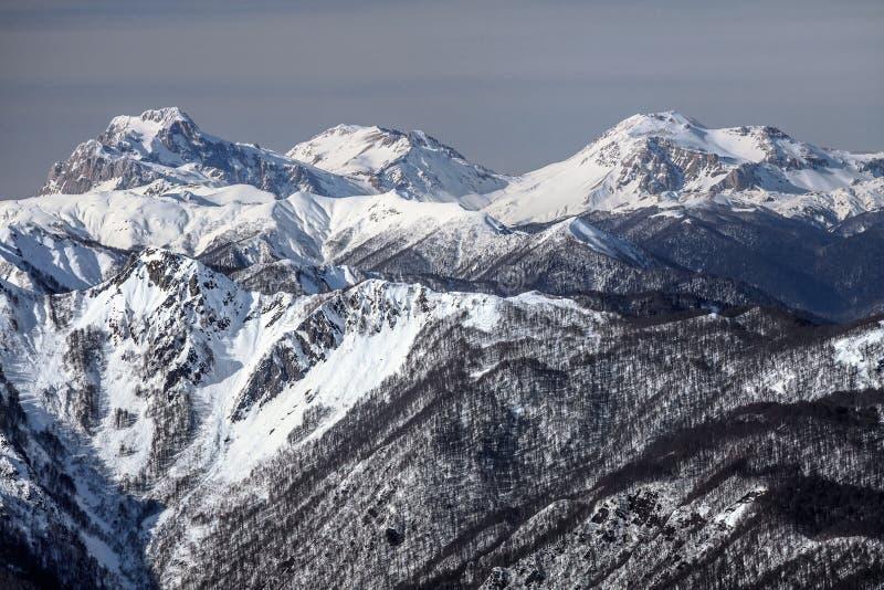 美好的多雪的山峰风景冬天风景 登上Fisht, Pshekhasu,在高加索山脉的Oshten 库存照片