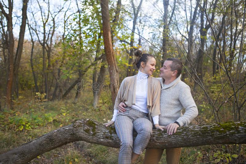 美好的夫妇坐在公园拥抱的树 免版税库存图片