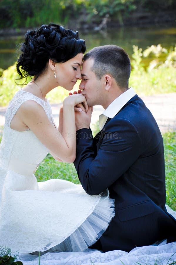 年轻美好的夫妇室外肉欲的画象在摆在夏天的爱的停放亲吻他的女朋友的男朋友 库存图片
